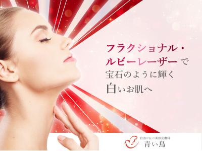 日本の美肌プラン