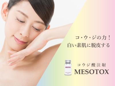 MESOTOX