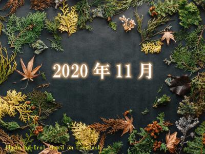 2020年11月