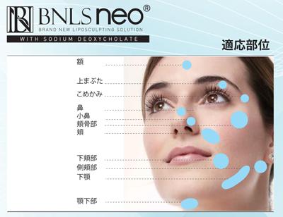 BNLSNeo注入部位