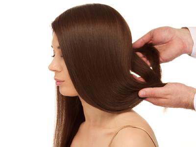 毛の基礎知識1
